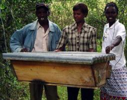 The Kenya Top Bar Hive (KTBH) Was Developed In Kenya And Is Now Used Around  The World