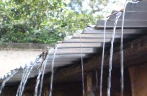 Don't waste rainwater falling on the roof