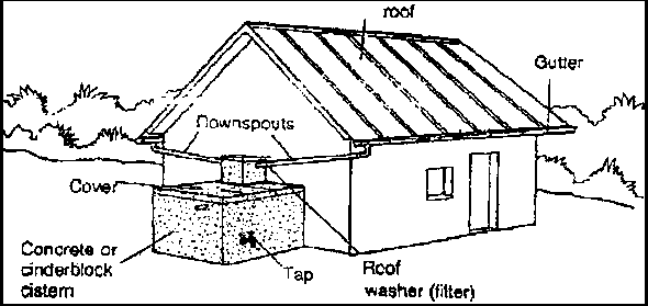 Rainwater catchment systems. Buildings can use a significant amount of water. Harvesting rainwater helps conserve water and preserve stream and river ecosystems.