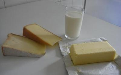 Milk and Dairy products | Infonet Biovision Home