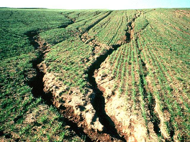 Introduction to soil degradation infonet biovision home for Soil erosion causes