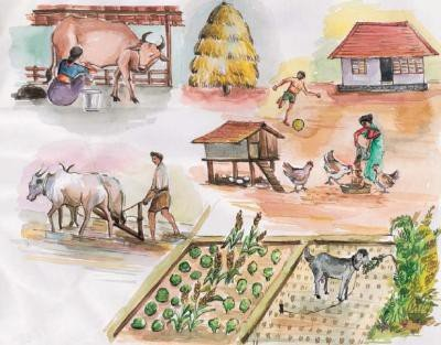 <p><b>Integrating animals into the farm</b>. Animals integrated into the farm, showing the flow of fodder, dung and products</p>      <p>© Ifoam Training Manual for Organic Farming in the Tropics</p>