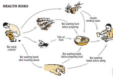 <p>Look carefully at this drawing and become familiar with all these<b> seven possible ways in which microbes from faeces can make us ill</b>.</p>      <p>© Tearfund 2005, Encouraging good hygiene and sanitation</p>