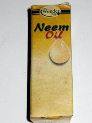 <p><b>Neem seed oil</b> (a medicinal preparation for skin problems)</p>     <p>(c) A.A. Seif</p>