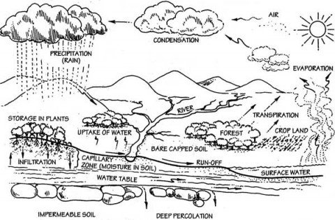 Water cycle and rain information infonet biovision home this illustration of the water cycle shows the way of the water from the ocean through the atmosphere brought back to the earth by rain evaporating again ccuart Images