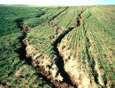 Soil erosion - Large rills on an eroding hillslope